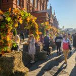 Программа Золотой Осени